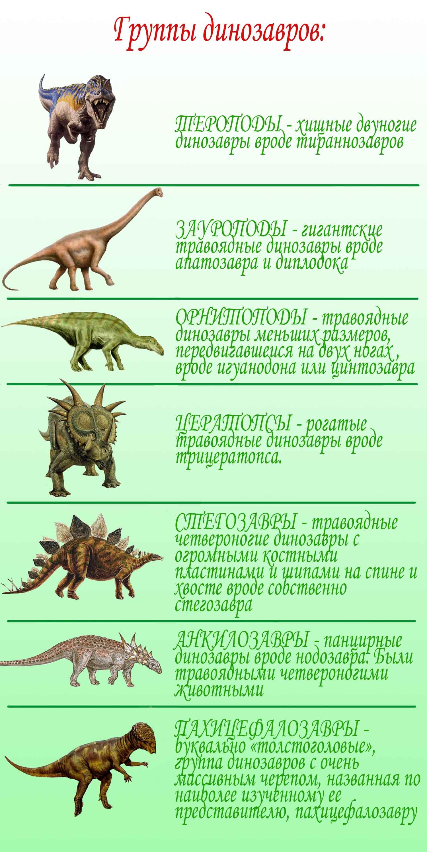 Селебрейшн-лав: рогатые динозавры